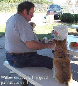 James and Willow at picnic table